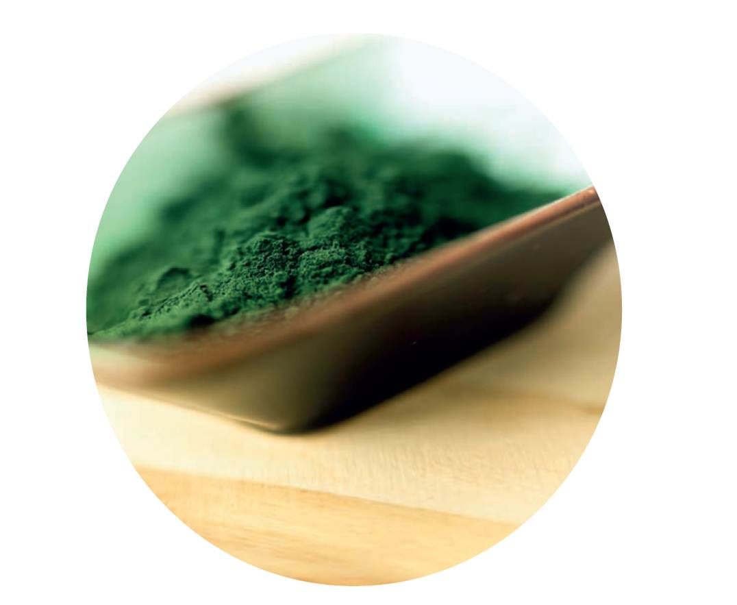 Safely Detox with Chlorella | Brookie-Lee