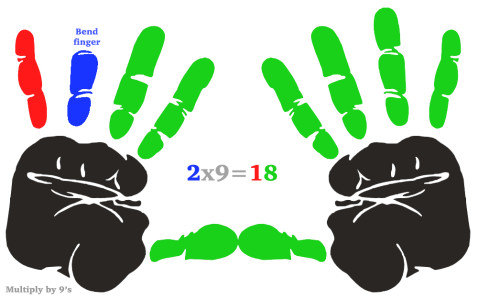 MultiplicationHands2x9